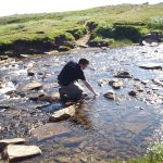 Fluss mit Brad